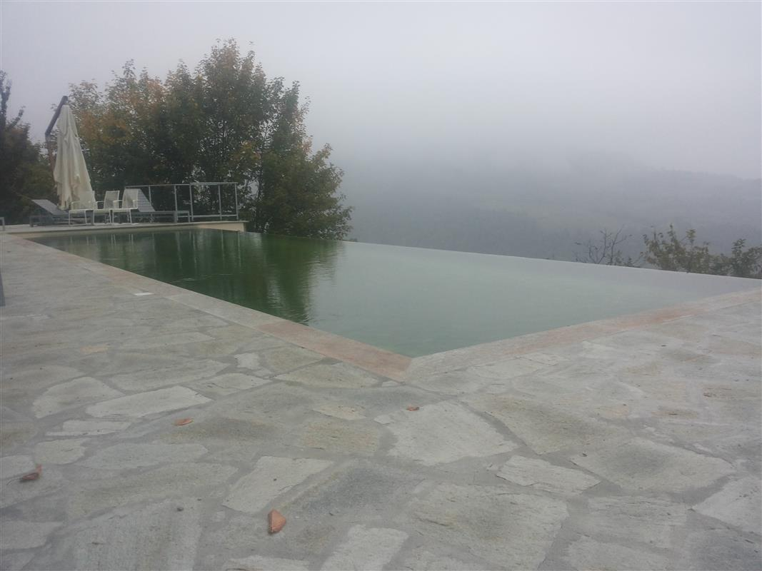 Natural stone swimming pool n°37
